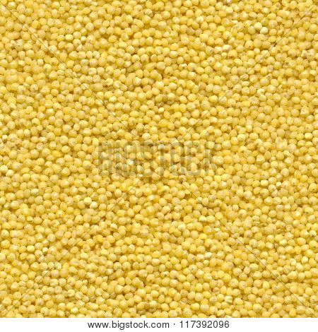 Seamless texture of millet grains
