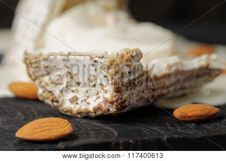 Goat cheese with mold crust, close-up
