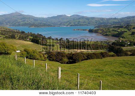 Akaroa Landscape
