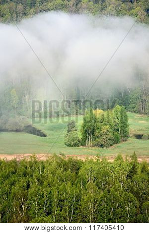View on Gauja valley in spring during strong fog in Sigulda Latvia