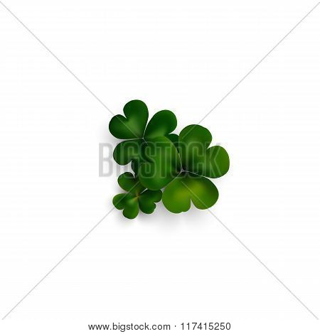 Green clovers on white with shadow, decoration for greeting cards. St Patricks day vector design