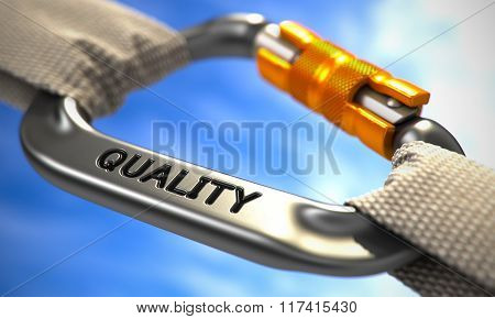 Chrome Carabiner Hook with Text Quality.