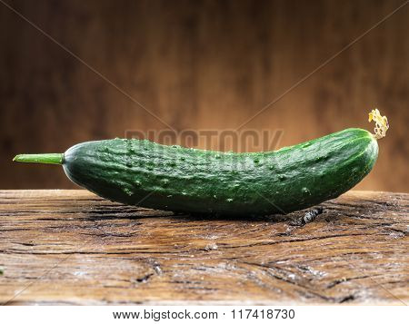Cucumber on the wooden table.