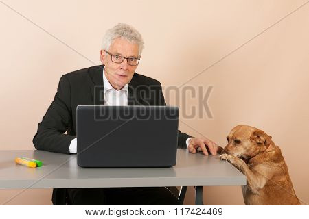 Dog at the office with senior business man