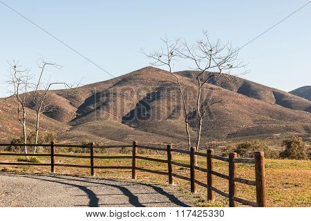 Trees with Fence and Mountains in Chula Vista, California