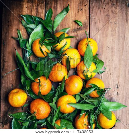 Fresh Picked Tangerine Clementines