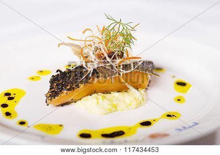Gourmet Salmon Dinner