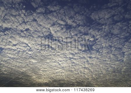 Altocumulus Cloud At Dawn