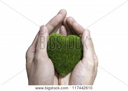 Human Hand Holding Green Grass Heart On Isolated White Background - Ecology And Environment Concept