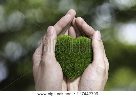 Human Hand Holding Green Grass Heart On Blurred Green Nature Background- Ecology And Environment Con