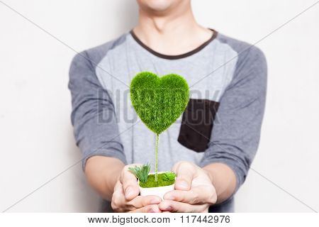 Young Man Holding A Pot Of Tree In Heart-shape In White Isolated Background - Ecology And Environmen