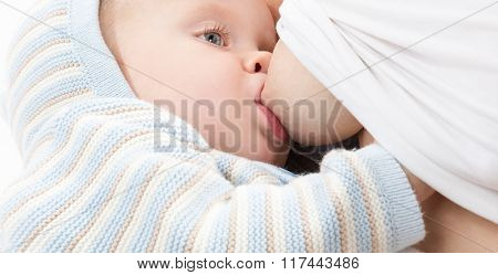 little child baby boy  breastfeeding mother isolated on white studio shot warm cloth