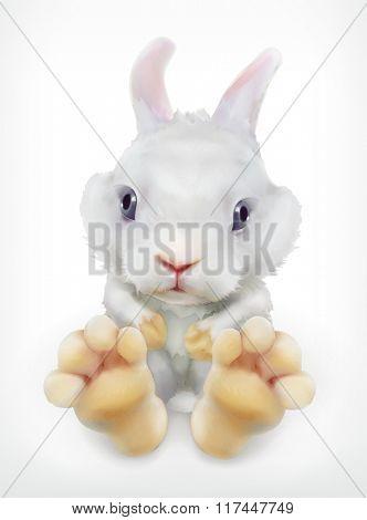 Cute white rabbit, vector icon