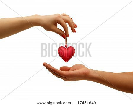 Closeup Girl's Hand Giving Red Heart In Hand Man, Isolated On White