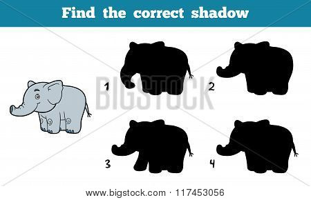 Find The Correct Shadow (elephant)