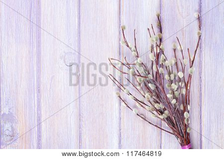 Pussy willow bunch over wooden table background with copy space