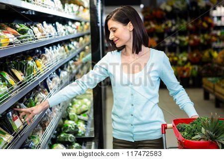 Portrait of a smiling woman doing shopping in supermarket