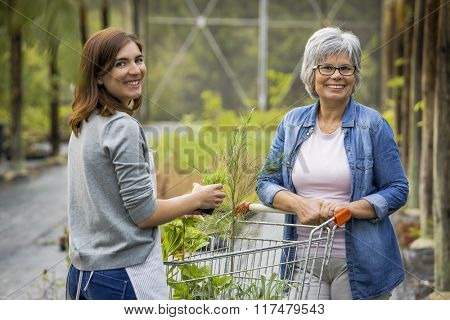 Florist helping a elderly female customer choosing plants