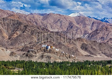 Thiksey gompa and Himalayas. Ladakh, Jammu and Kashmir, India