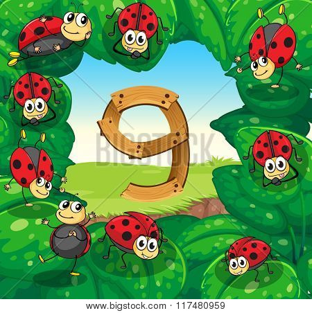 Number nine with nine ladybugs on leaves illustration