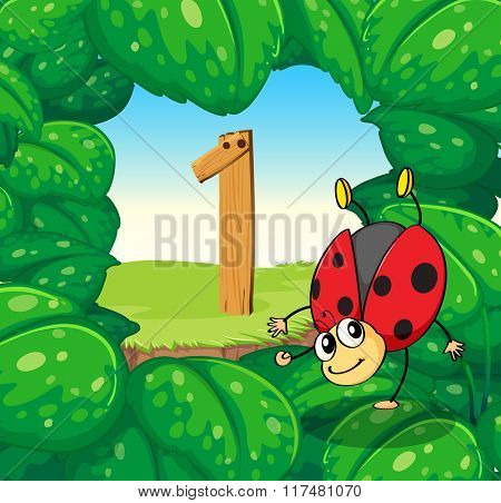 Number one with one ladybug on leaves illustration