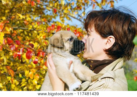 The Puppy Of The Spanish Mastiff Licks A Woman's Face