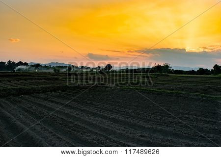 View Agriculture Field Farms In Evening Time