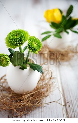 Fresh flowers in egg shells for Easter
