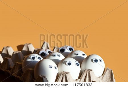 Group of eggs with false eyes in a cardboard container