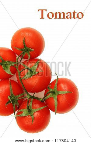 Branch Of Ripe Tomato Isolated On White Background.