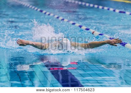 male swimmer swimming in pool butterfly