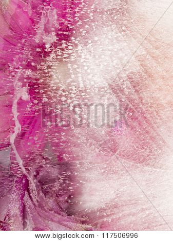 Abstraction With Pink Flowers In Ice