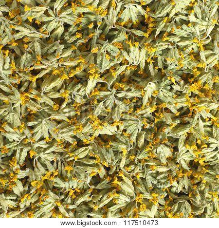 Dried Herbs.
