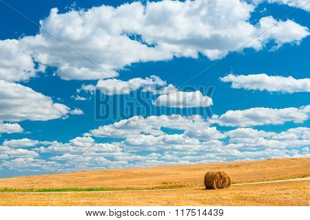 Beautiful Sky Over Agricultural Land In Autumn After Harvest