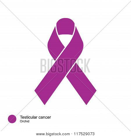 testicular cancer ribbon vector