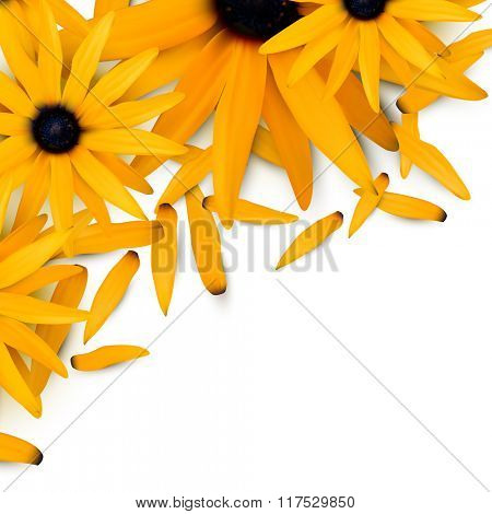 vector flower illustration