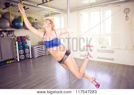 Training On The Pole