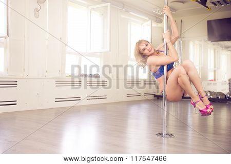 Sensual Woman On The Dance Pole