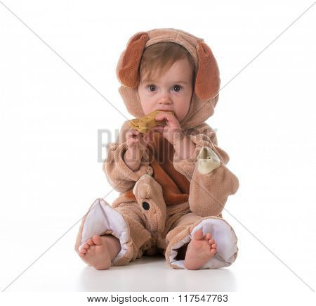 little girl dressed like a puppy isolated on white background