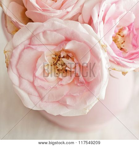 Old fashioned bouquet of flowers