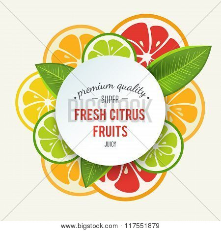Banner with stylized citrus fruit and splashes
