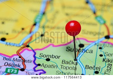 Backa Topola pinned on a map of Serbia