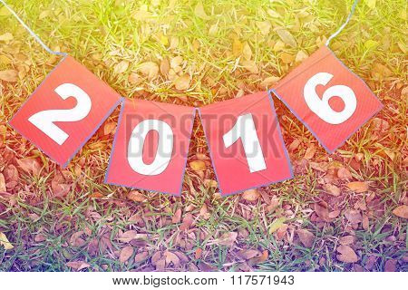 Paper Sign 2016 On Green Grass, Happy New Year