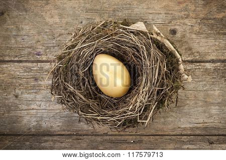 golden egg in bird nest on rustic wooden background, top view
