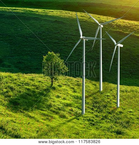 Wind turbines and tree on green meadow in summer. Eco energy concept.