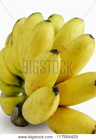 bunch of ripened bananas on the white background