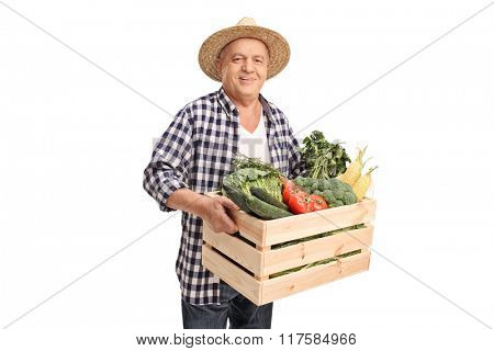 Mature agricultural worker holding a wooden crate full of fresh vegetables isolated on white background