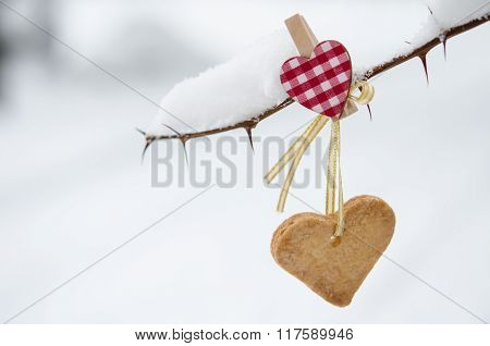 Snow-covered Branch Decorated With Heart-shaped Cookie.