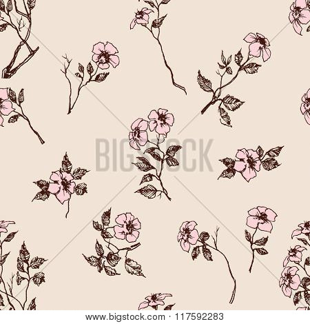 Delicate floral pattern, pink flowers spring background