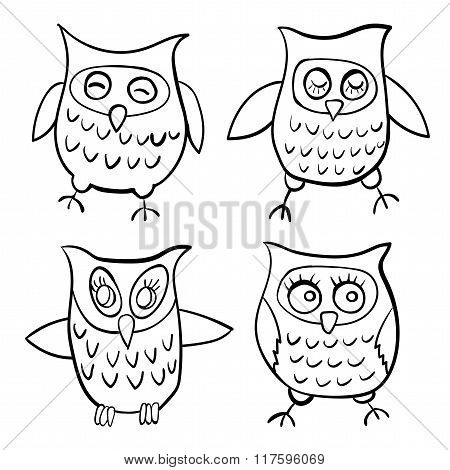 set of characters funny owls children contour doodle vector illustration